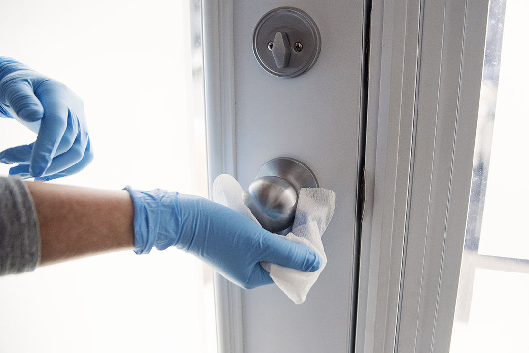 Female hands with blue glove wiping doorknob with disinfectant wipe. Horizontal indoors close-up with copy space.